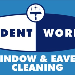 Student Works Window and Eaves Cleaning