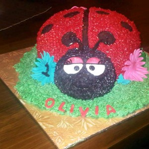 Mrs Butterfly Cakes