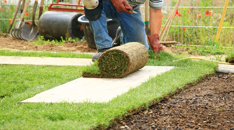 Landscaping & Snow Removal Services in Windsor